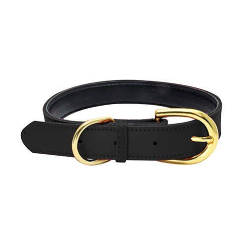 Colorful Collar Black