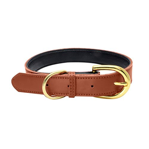 Colorful Collar Brown