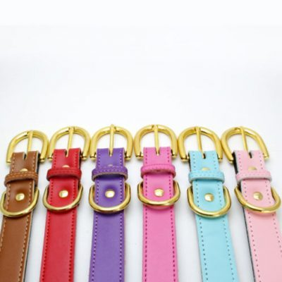 Colorful Collar Pink